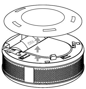 carbon monoxide detector setup